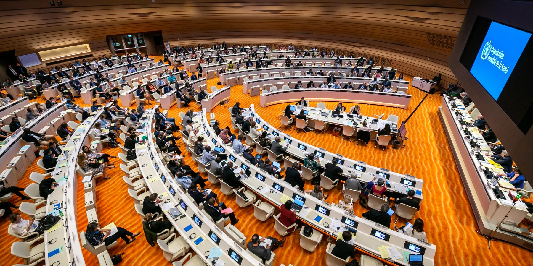 World Health Assembly in Geneva this week