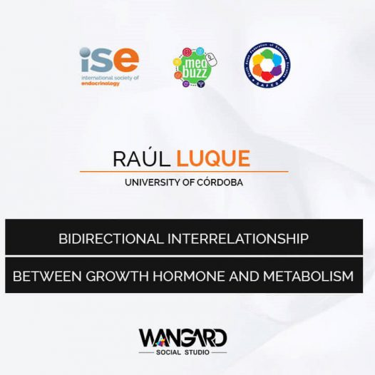 Bidirectional Interrelationship Between GH And Metabolism