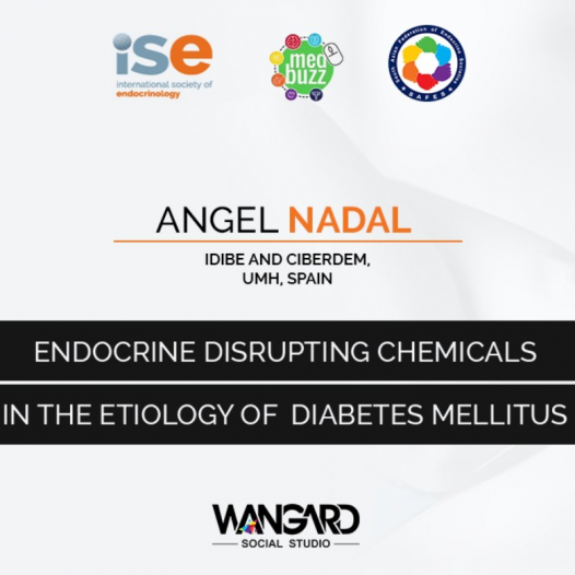 Endocrine Disrupting Chemicals in the Etiology of DM